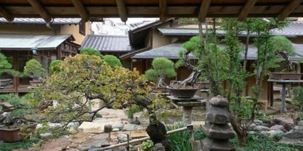 第6回 こんな家の風景 ─工務店が取り組むべきターゲットは・・・